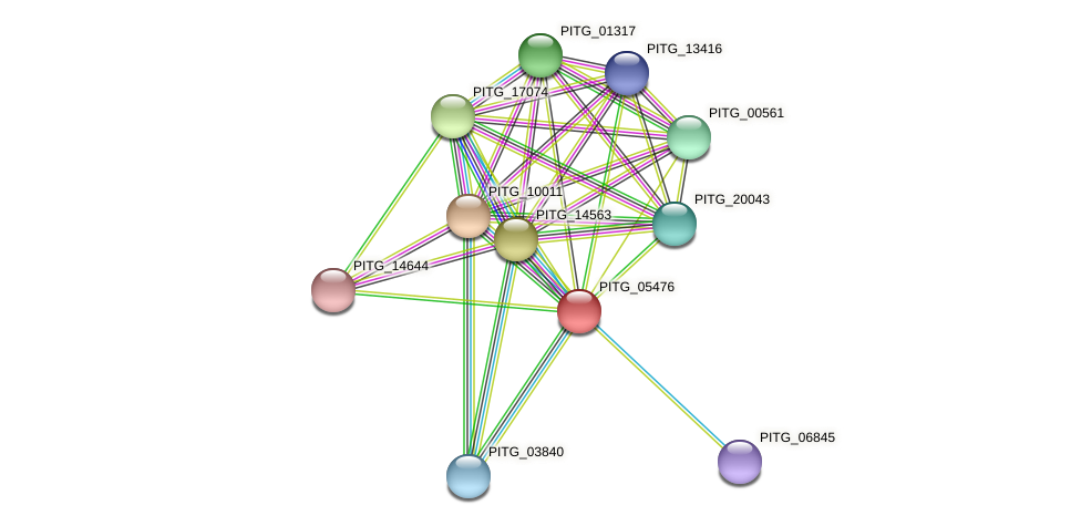 PITG_05476 protein (Phytophthora infestans) - STRING interaction network