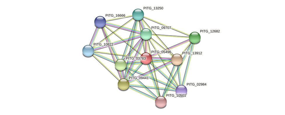 PITG_05496 protein (Phytophthora infestans) - STRING interaction network