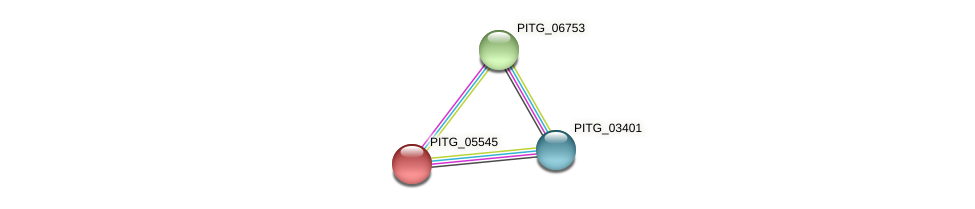 PITG_05545 protein (Phytophthora infestans) - STRING interaction network