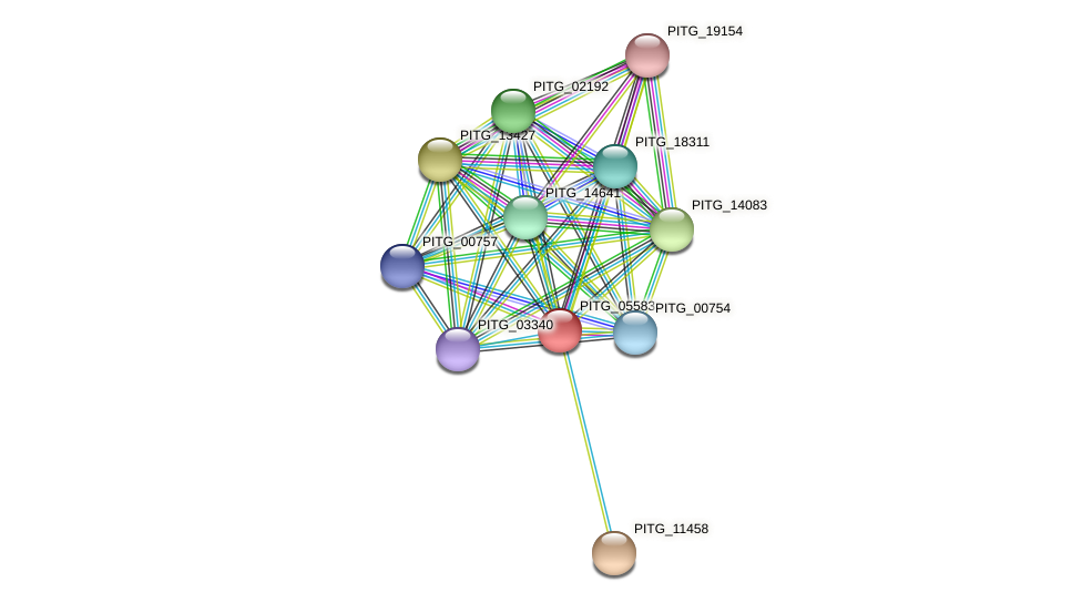 PITG_05583 protein (Phytophthora infestans) - STRING interaction network