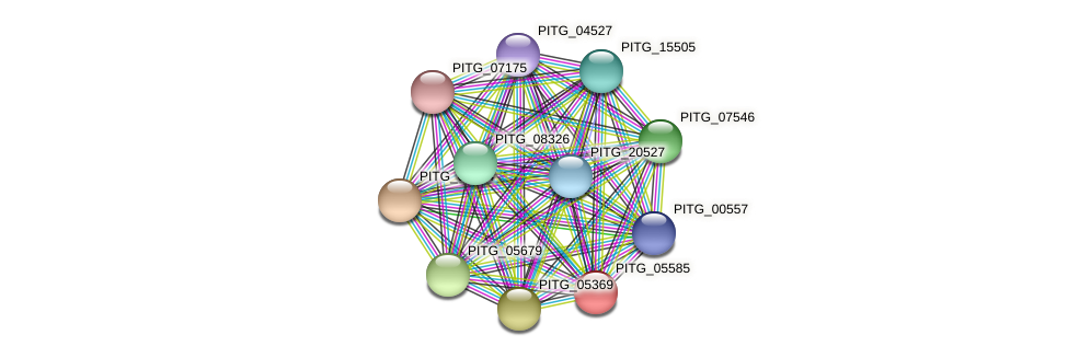 PITG_05585 protein (Phytophthora infestans) - STRING interaction network