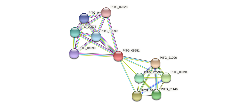 PITG_05651 protein (Phytophthora infestans) - STRING interaction network