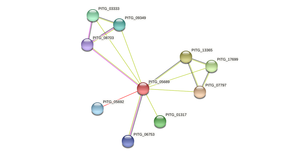 PITG_05689 protein (Phytophthora infestans) - STRING interaction network