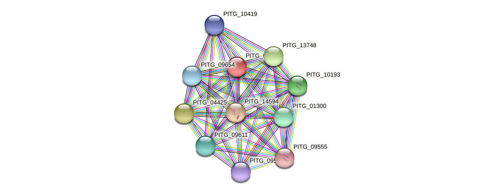 PITG_05690 protein (Phytophthora infestans) - STRING interaction network