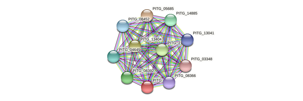 PITG_05694 protein (Phytophthora infestans) - STRING interaction network