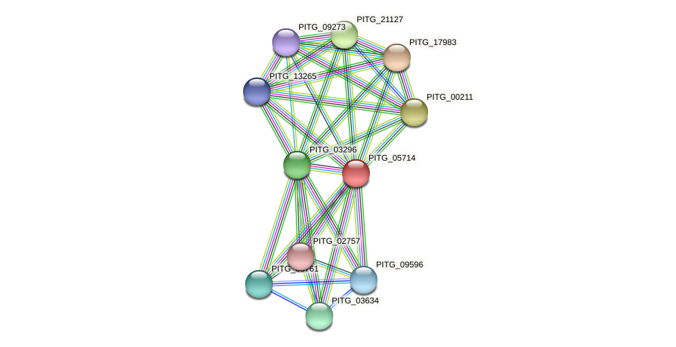 PITG_05714 protein (Phytophthora infestans) - STRING interaction network