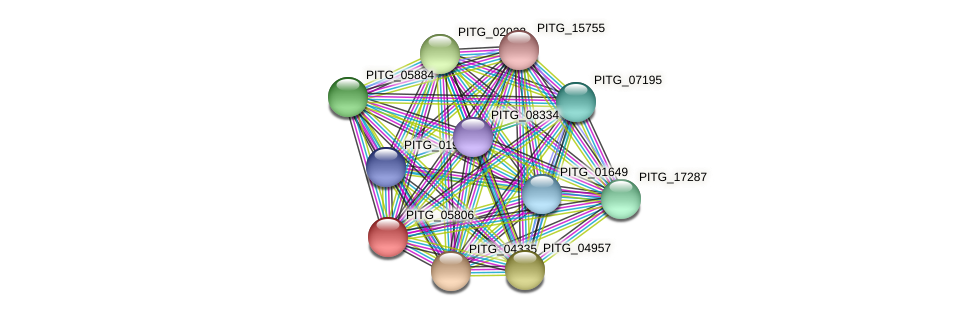 PITG_05806 protein (Phytophthora infestans) - STRING interaction network