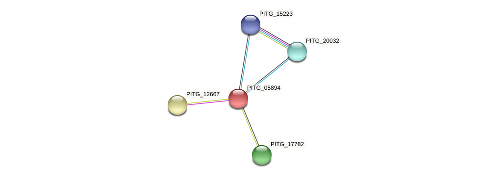 PITG_05894 protein (Phytophthora infestans) - STRING interaction network