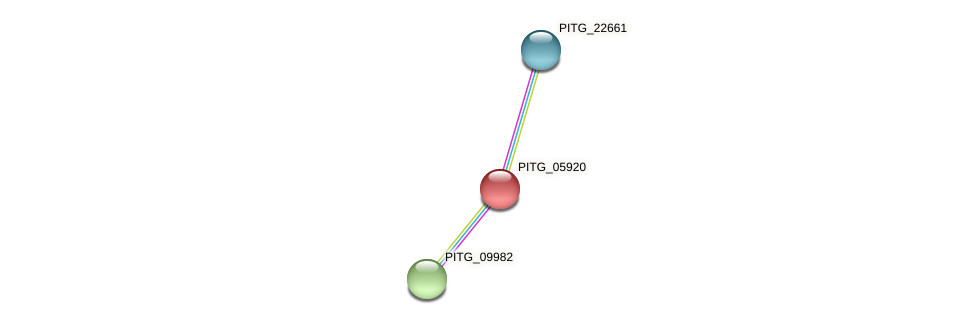 PITG_05920 protein (Phytophthora infestans) - STRING interaction network