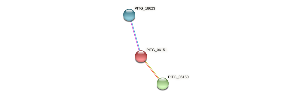 PITG_06151 protein (Phytophthora infestans) - STRING interaction network