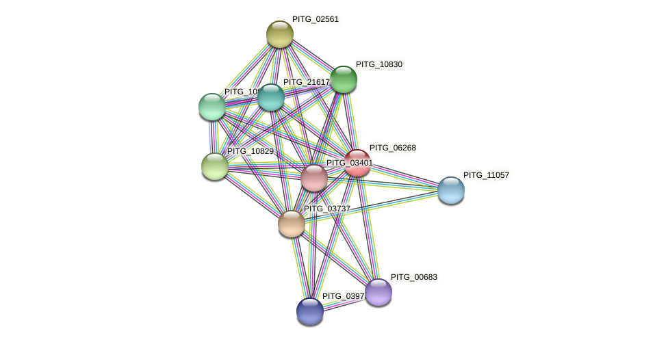 PITG_06268 protein (Phytophthora infestans) - STRING interaction network
