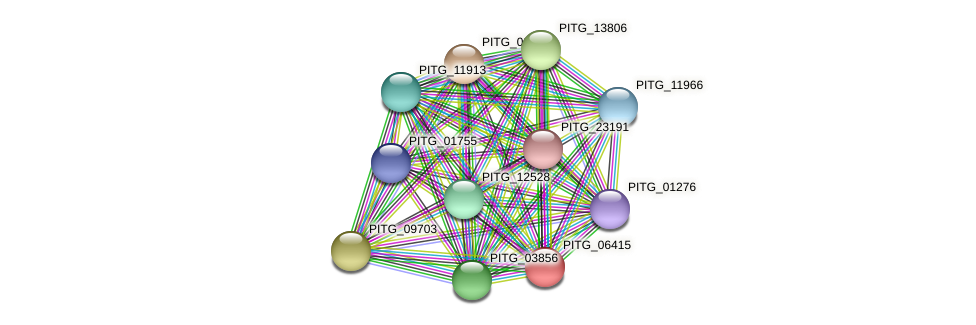 PITG_06415 protein (Phytophthora infestans) - STRING interaction network