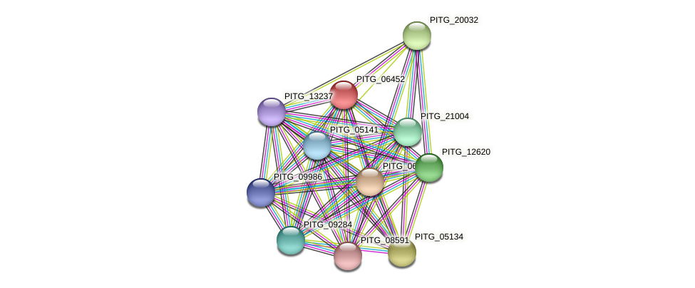 PITG_06452 protein (Phytophthora infestans) - STRING interaction network