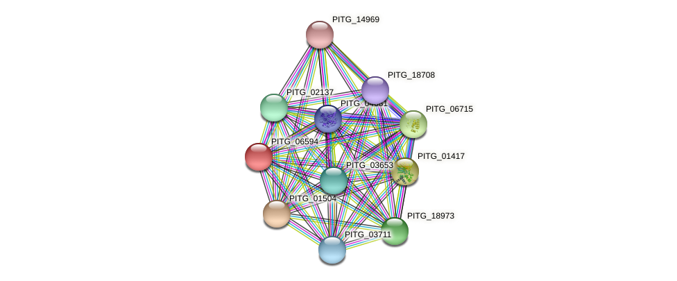 PITG_06594 protein (Phytophthora infestans) - STRING interaction network