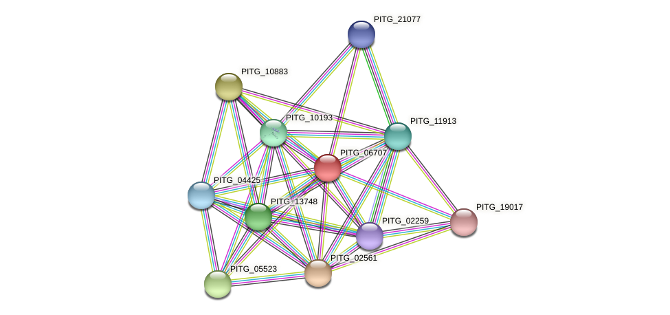 PITG_06707 protein (Phytophthora infestans) - STRING interaction network