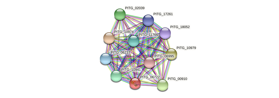 PITG_04640 protein (Phytophthora infestans) - STRING interaction network