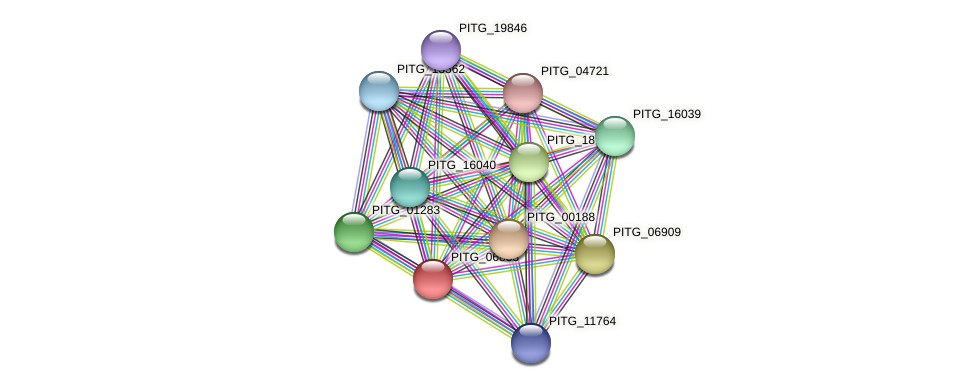 PITG_06833 protein (Phytophthora infestans) - STRING interaction network