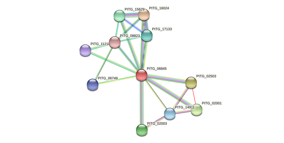 PITG_06845 protein (Phytophthora infestans) - STRING interaction network
