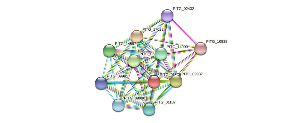PITG_06876 protein (Phytophthora infestans) - STRING interaction network