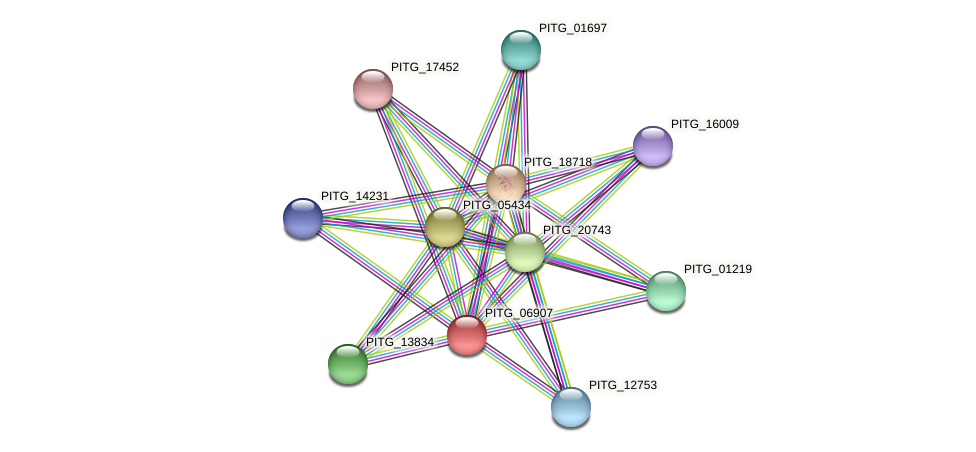 PITG_06907 protein (Phytophthora infestans) - STRING interaction network