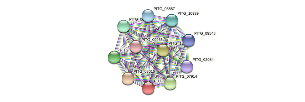 PITG_06920 protein (Phytophthora infestans) - STRING interaction network