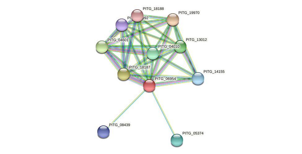 PITG_06954 protein (Phytophthora infestans) - STRING interaction network