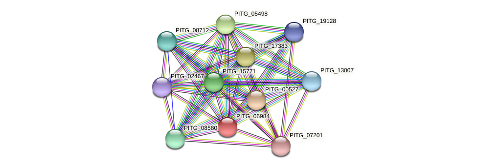 PITG_06984 protein (Phytophthora infestans) - STRING interaction network