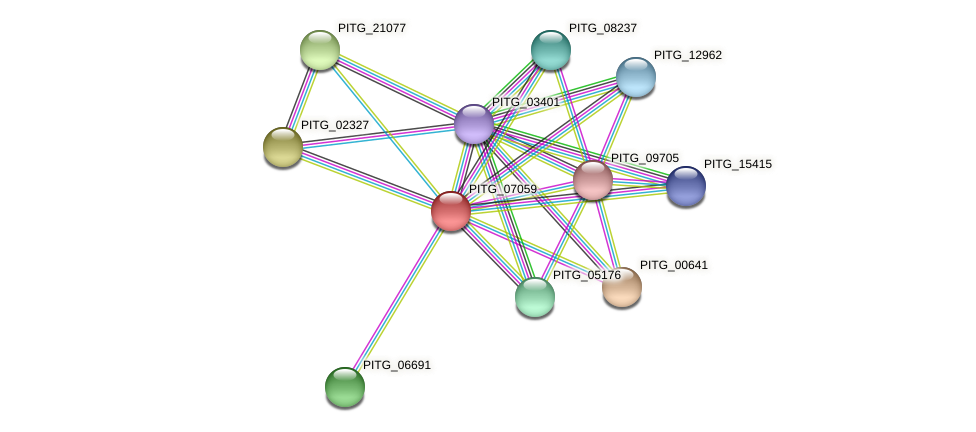 PITG_07059 protein (Phytophthora infestans) - STRING interaction network