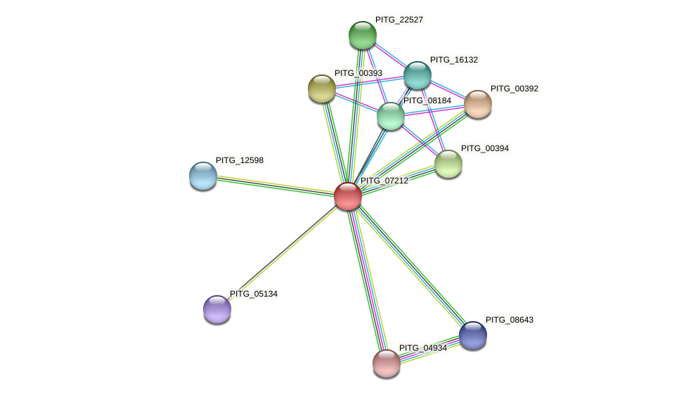 PITG_07212 protein (Phytophthora infestans) - STRING interaction network