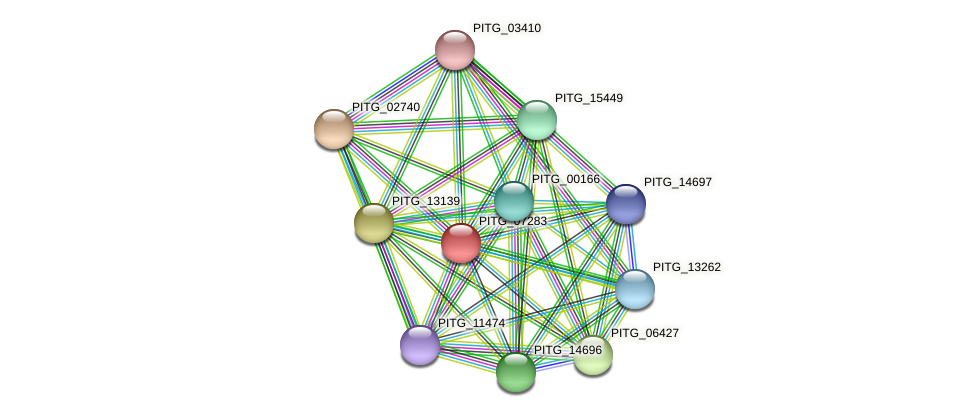 PITG_07283 protein (Phytophthora infestans) - STRING interaction network
