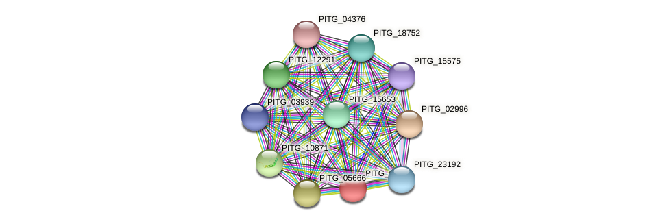PITG_07306 protein (Phytophthora infestans) - STRING interaction network