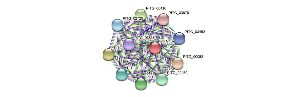 PITG_07308 protein (Phytophthora infestans) - STRING interaction network