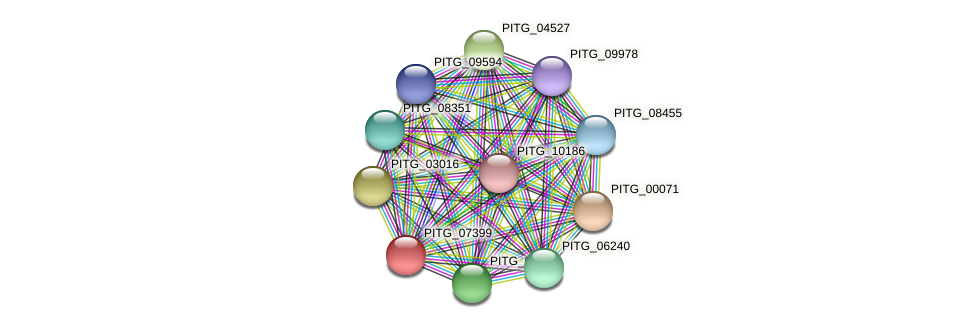 PITG_07399 protein (Phytophthora infestans) - STRING interaction network