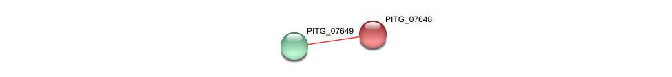 PITG_07648 protein (Phytophthora infestans) - STRING interaction network
