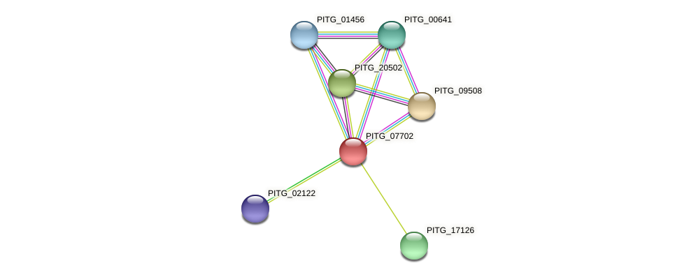PITG_07702 protein (Phytophthora infestans) - STRING interaction network
