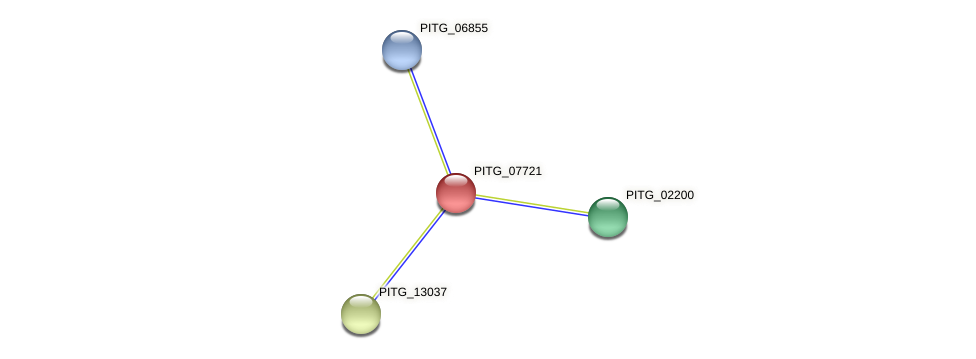 PITG_07721 protein (Phytophthora infestans) - STRING interaction network
