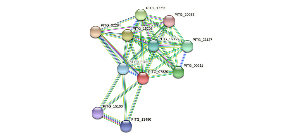 PITG_07820 protein (Phytophthora infestans) - STRING interaction network