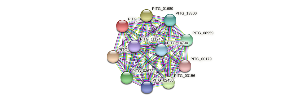PITG_08235 protein (Phytophthora infestans) - STRING interaction network