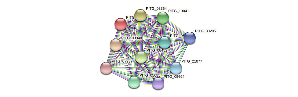 PITG_08366 protein (Phytophthora infestans) - STRING interaction network
