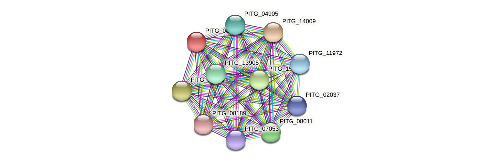 PITG_08368 protein (Phytophthora infestans) - STRING interaction network