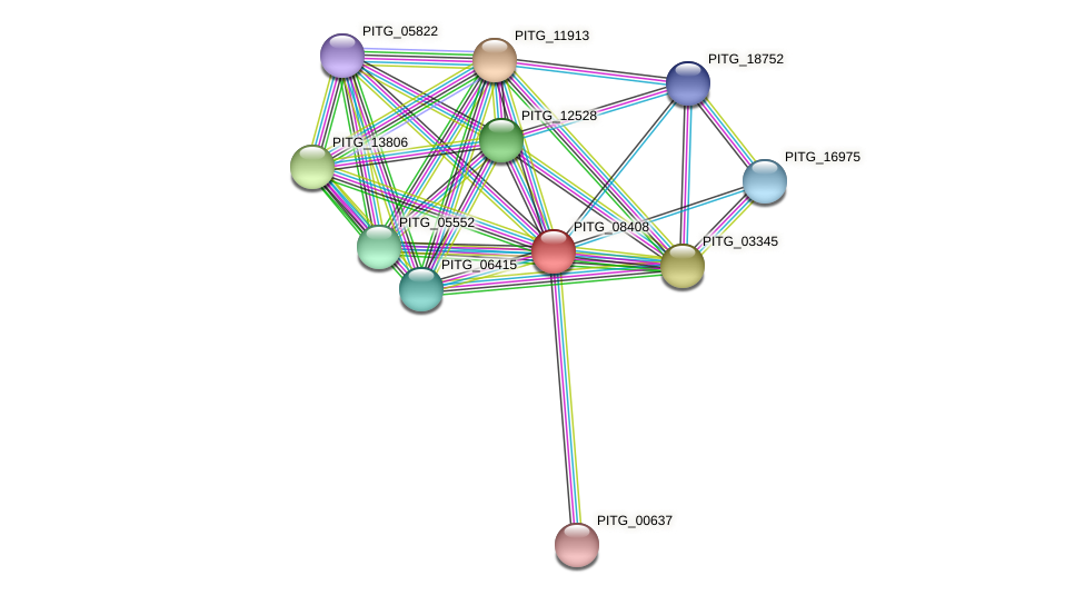 PITG_08408 protein (Phytophthora infestans) - STRING interaction network