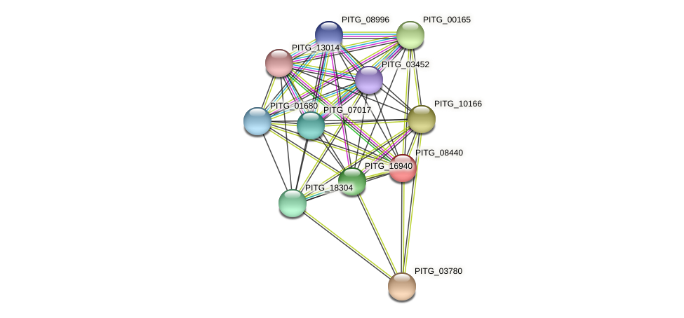 PITG_08440 protein (Phytophthora infestans) - STRING interaction network