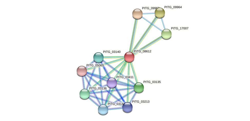 PITG_08612 protein (Phytophthora infestans) - STRING interaction network