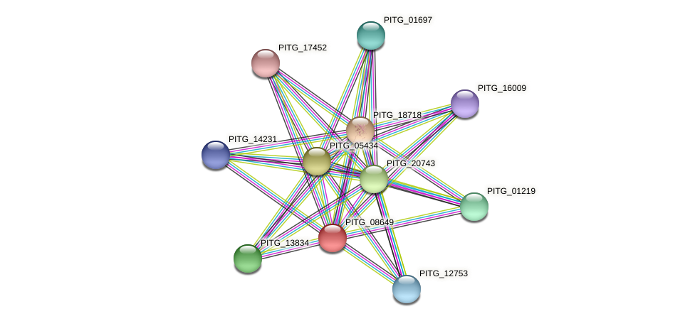 PITG_08649 protein (Phytophthora infestans) - STRING interaction network