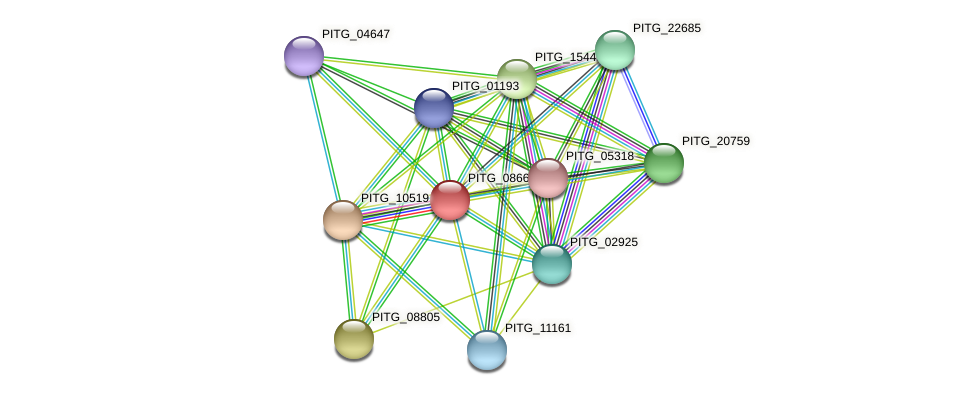 PITG_08669 protein (Phytophthora infestans) - STRING interaction network