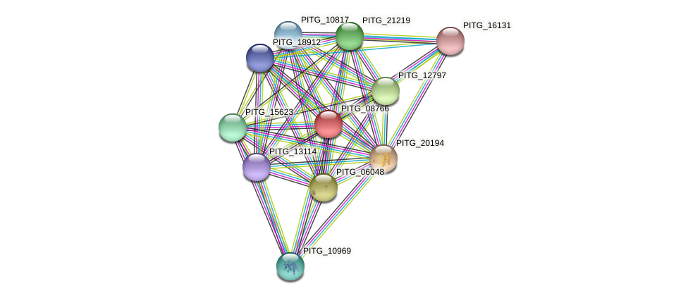 PITG_08766 protein (Phytophthora infestans) - STRING interaction network
