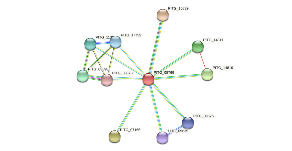 PITG_08769 protein (Phytophthora infestans) - STRING interaction network