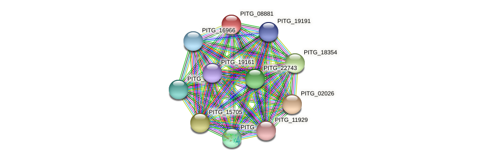 PITG_08881 protein (Phytophthora infestans) - STRING interaction network