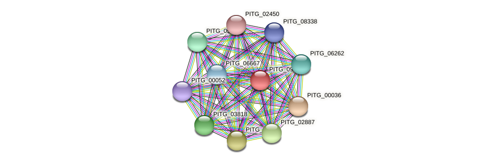 PITG_09222 protein (Phytophthora infestans) - STRING interaction network