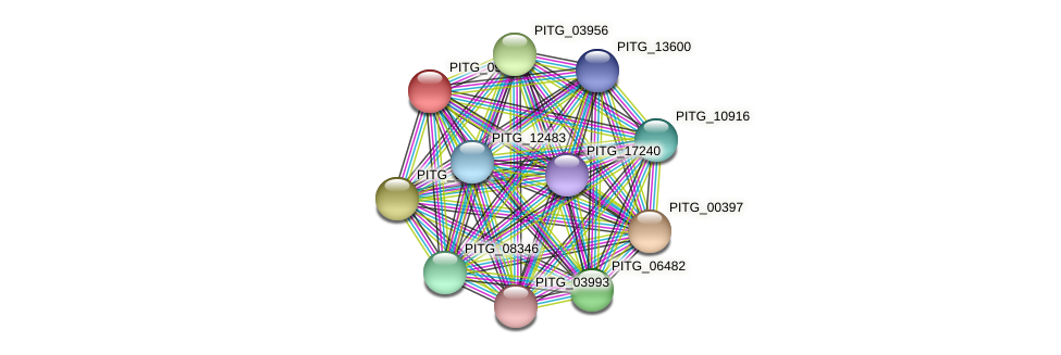 PITG_09289 protein (Phytophthora infestans) - STRING interaction network